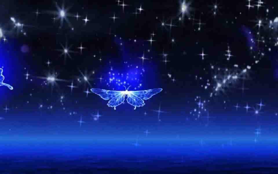高清唯美星空蓝色蝴蝶动态动态壁纸